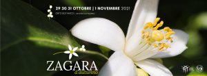 Zagara d'autunno 2021 all'Orto Botanico di Palermo @ Orto Botanico dell'Università degli Studi di Palermo
